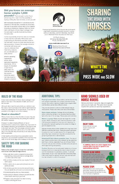 Sharing the Road with Horses brochure PDF